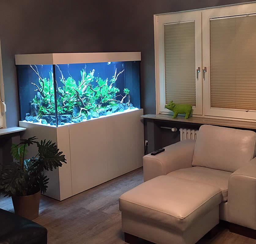 Wir gestalten ihr indiv wunschbecken aquariumbau for Aquarium unterschrank selber bauen